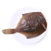大西洋深海野生欧鲽鱼500g