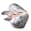 春播冰鲜水产大西洋三文鱼头(非真空)2只装