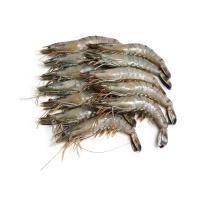 马来西亚野生老虎虾(21-25只/kg)430g