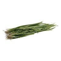 分享收获农庄韭菜400g
