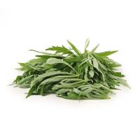 春播农庄香柳蒿150g