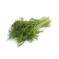 自然乐章农庄有机栽培茴香350g