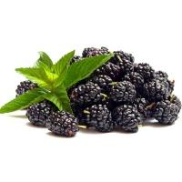 安心优选云南黑莓1盒装