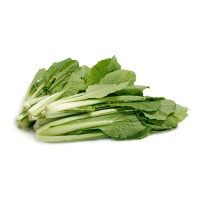 自然乐章农庄有机栽培小白菜300g
