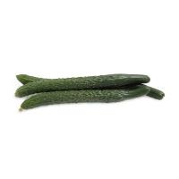 分享收获农庄黄瓜500g