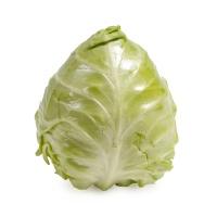 春播农庄有机栽培圆白菜300-400g