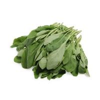 自然乐章农庄有机栽培大叶芝麻菜200g