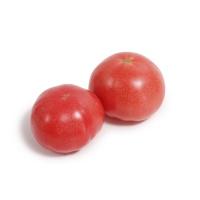 分享收获农庄粉果西红柿450-500g