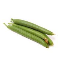 诚誉农庄有机栽培丝瓜450-550g
