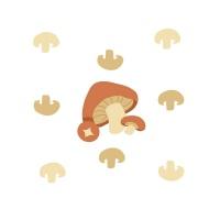 春播安心直采有机栽培牛排菇(褐菇)250-300g