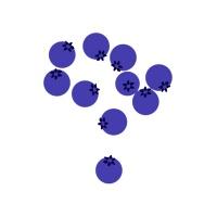 安心优选国产蓝莓1盒装