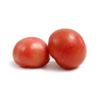 春播农庄有机栽培普罗旺斯番茄450-500g