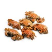 2017年春播阳澄湖精品大闸蟹美礼盒 母蟹2.0-2.4两3只,公蟹2.8-3.2两3只
