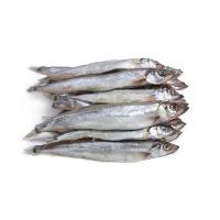 加拿大原装进口野生毛鳞鱼300g