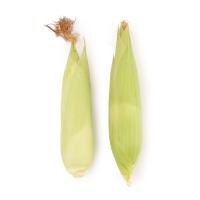 春播安心直采四川糯玉米500g(2-3根)