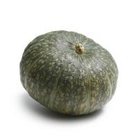 王红军种植朔州小南瓜0.9-1.1kg