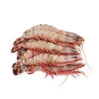 红爪对虾450g