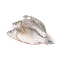 丹江口野生渔(冷冻小鲫鱼)300g