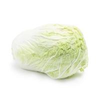 春播安心直采胶州大白菜2kg