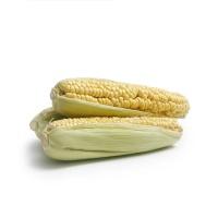 春播农庄有机栽培丑甜玉米800-1000g(3-4根)