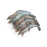 冷冻马来西亚老虎虾(26-30只/kg)400g