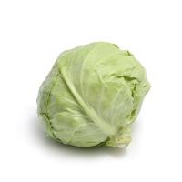 春播农庄有机栽培圆白菜600-800g