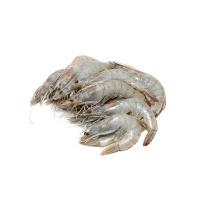 原装进口厄瓜多尔白对虾(30-40/kg)1.8kg