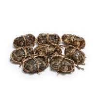 春播活水产阳澄湖六月黄大闸蟹(2两母2.5两公)4对8只装